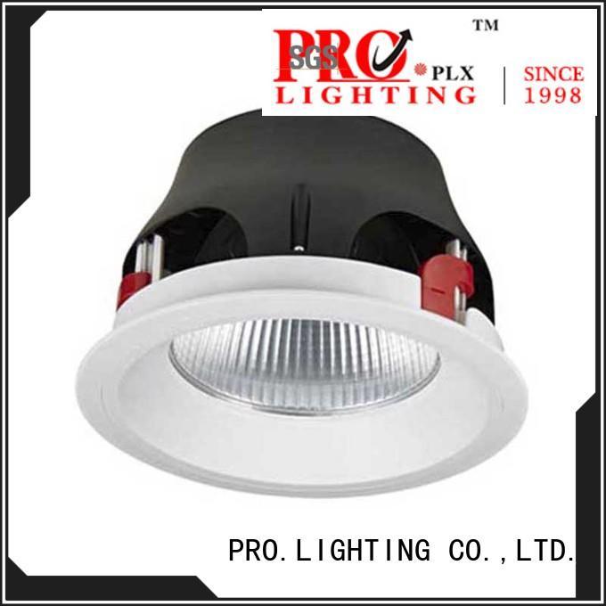 Pro.Lighting High Quality Unique Design Downlight Recessed Cob Led Down Light 50W DL4028