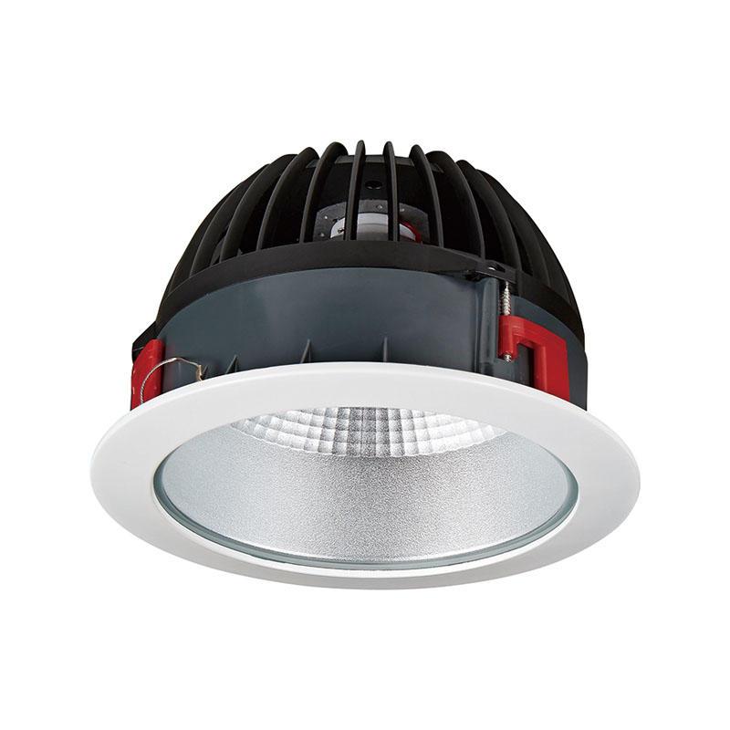 Pro.Lighting Aluminum Recessed Downlight Cob Led Down Light 50W IP44 10029LED