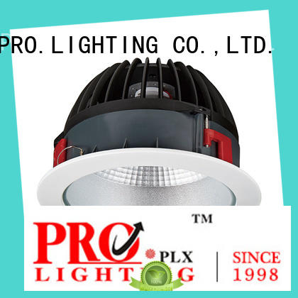 PRO.Lighting item indoor downlight supplier for restaurant