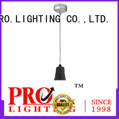 PRO.Lighting 40w pendant light fitting customized for museum