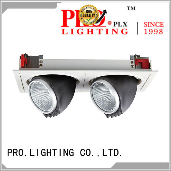 Pro.Lighting Recessed Grille Spot Light 2x30W With Double Heads SPL4030-2