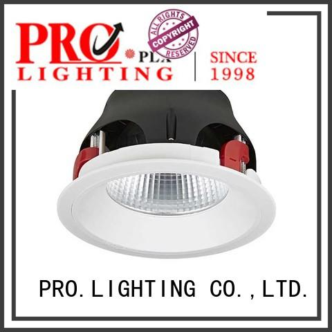 PRO.Lighting sturdy led downlight globes personalized for restaurant