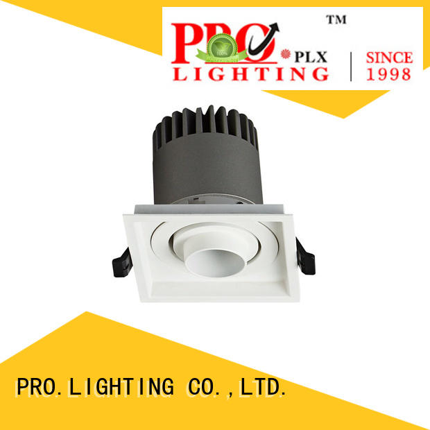 sturdy Spot Downlight personalized for stage