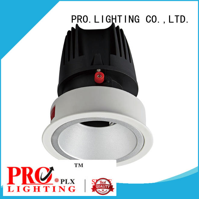 Pro.Lighting Newly Launched Round Trim Downlight Cob Led Down Light Wall Washer Light 30W DL8005