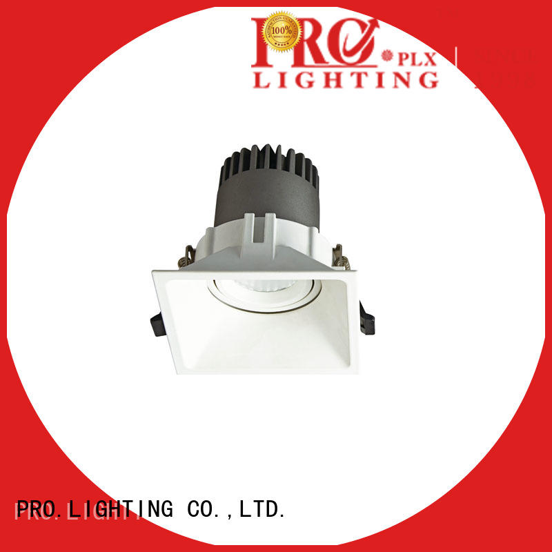 PRO.Lighting Spot Downlight supplier for stage