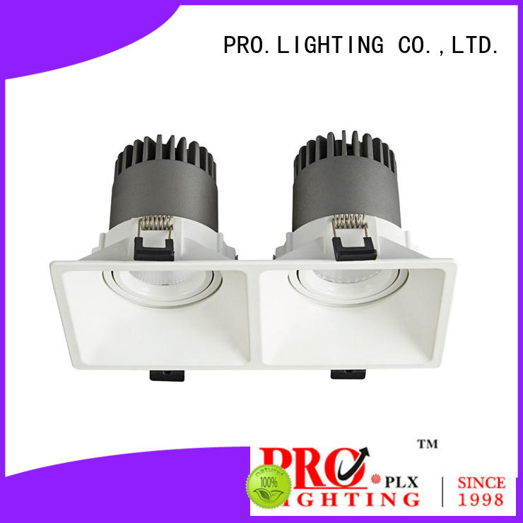 professional spot downlight led personalized for restaurant