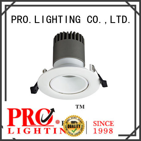 PRO.Lighting Spot Downlight personalized for restaurant