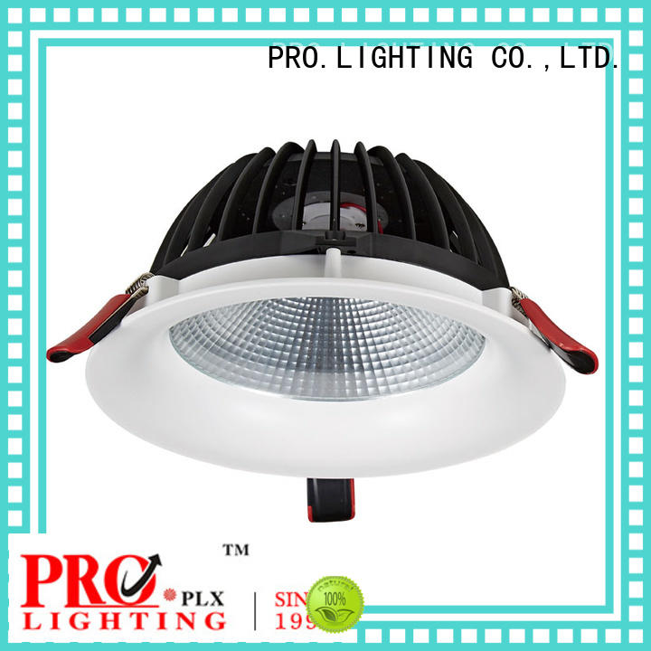 PRO.Lighting 30w exterior downlights personalized for ballroom