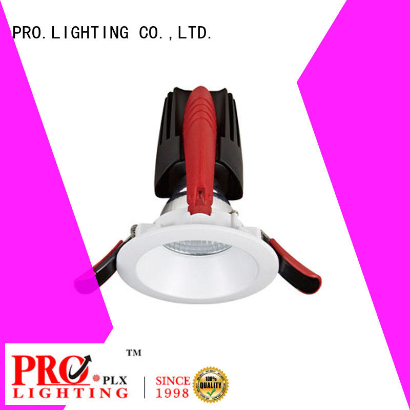 PRO.Lighting stable outdoor led downlights personalized for restaurant
