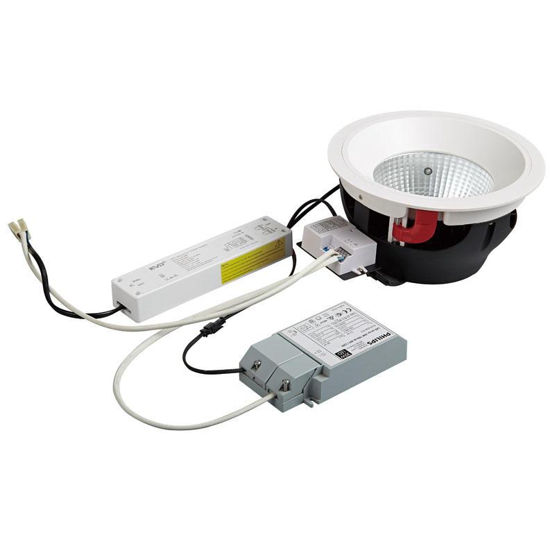 Pro.Lighting Microwave Sensor&Emergency Downlight 30W DL4026