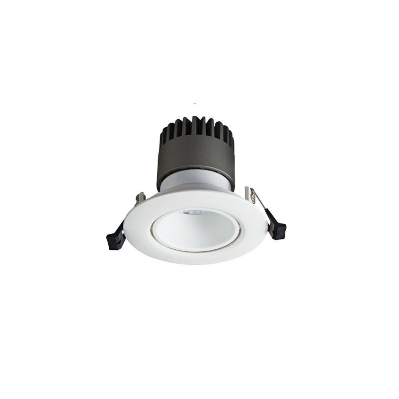 Pro.Lighting Led Modular Spot Downlight 10W DL9010 R1