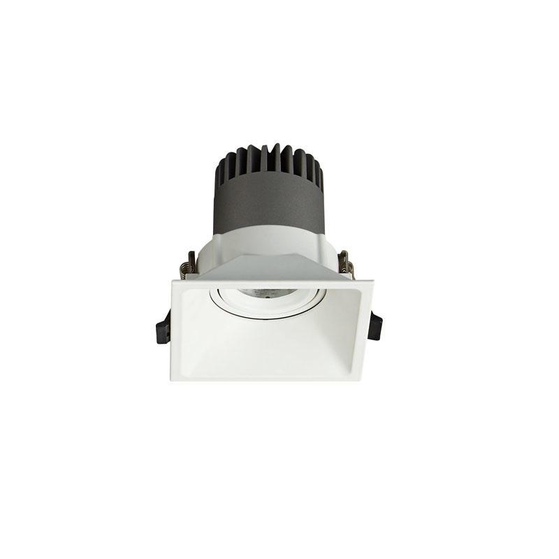 Pro.Lighting Led Modular Spot Downlight 15W DL9015 R5