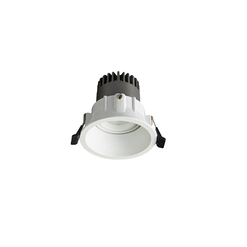 Pro.Lighting Led Modular Spot Downlight 10W DL9010 R8
