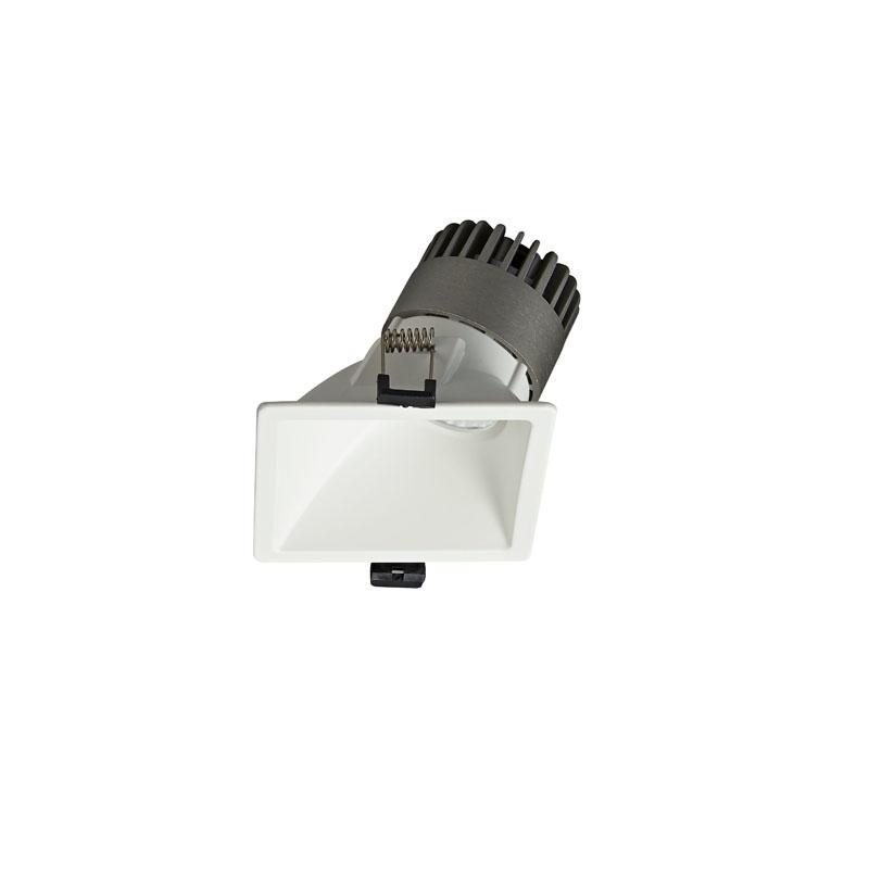 Pro.Lighting Led Modular Spot Downlight 10W DL9010 R9