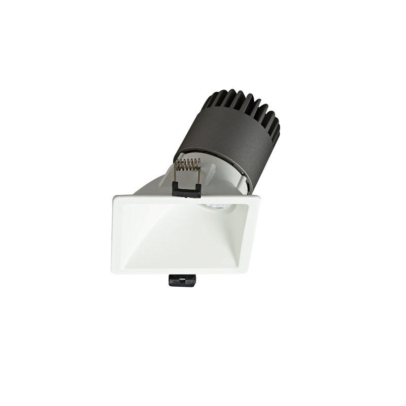 Pro.Lighting Led Modular Spot Downlight 15W DL9015 R9