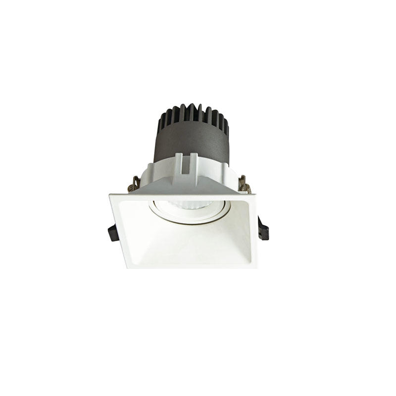Pro.Lighting Led Modular Spot Downlight 10W DL9010 R15