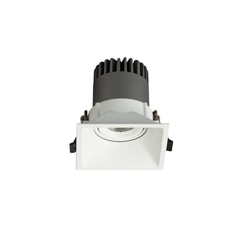 Pro.Lighting Led Modular Spot Downlight 15W DL9015 R15