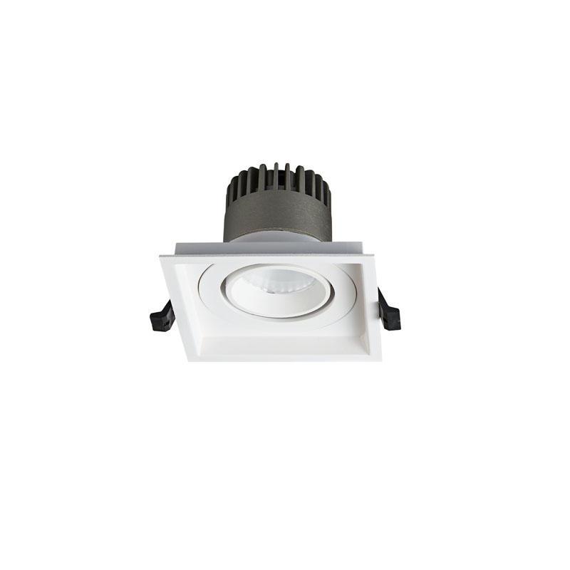 Pro.Lighting Led Modular Spot Downlight 10W DL9010 R17