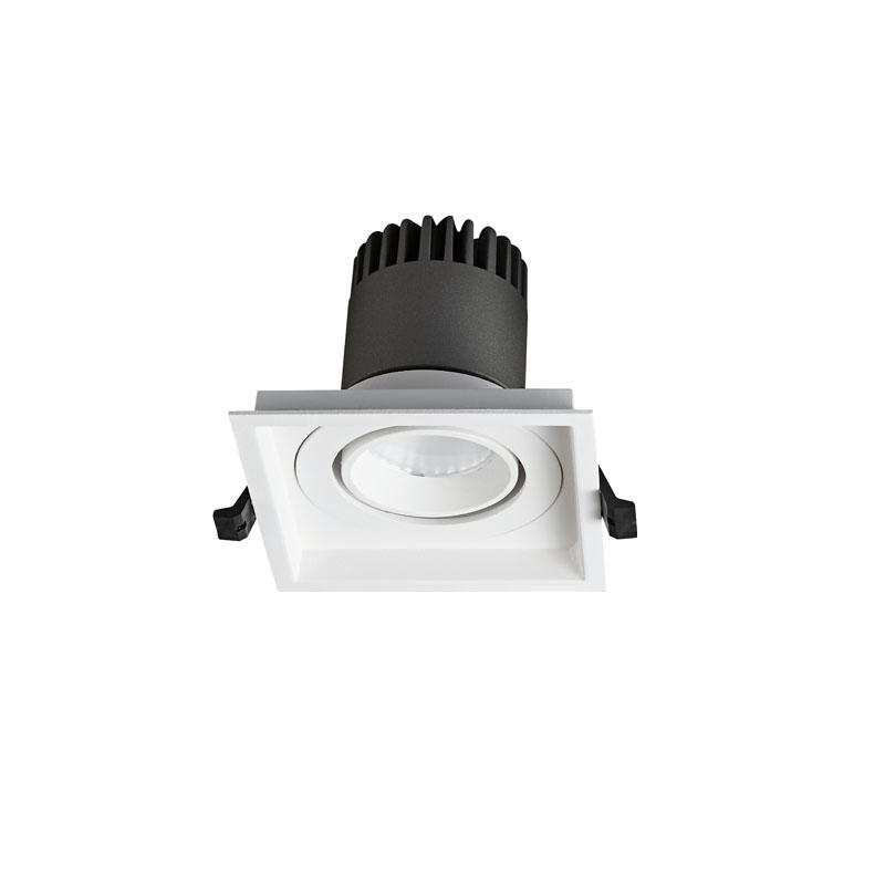 Pro.Lighting Led Modular Spot Downlight 15W DL9015 R17