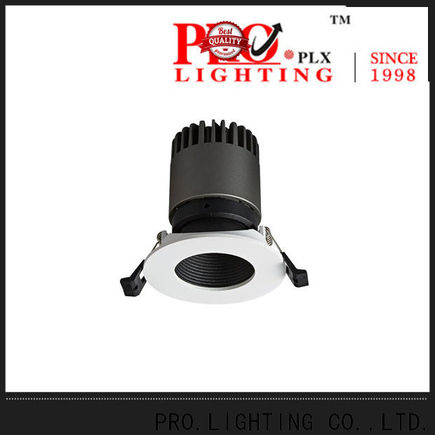 PRO.Lighting professional Spot Downlight personalized for stage