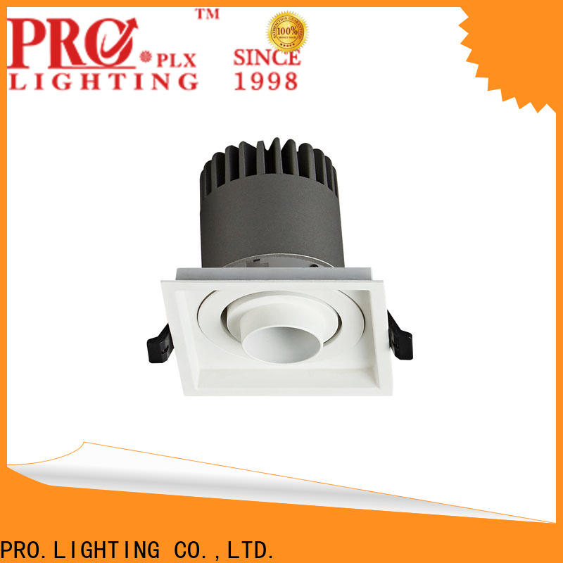 PRO.Lighting certificated spot led downlight personalized for stage