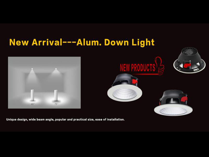 New arrival--Aluminum led downlight 10073N series
