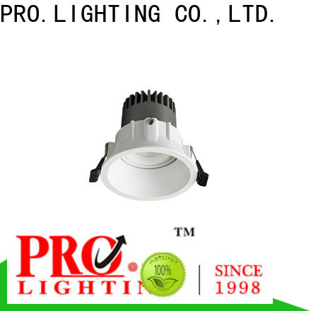 custom led spot downlight factory price for ballroom