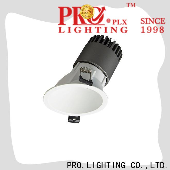 PRO.Lighting downlight spot personalized for restaurant