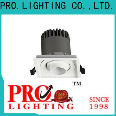PRO.Lighting custom downlight spot supplier for restaurant