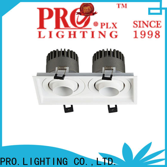 professional led downlight spot personalized for shop