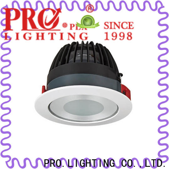 PRO.Lighting stable adjustable led downlight personalized for stage
