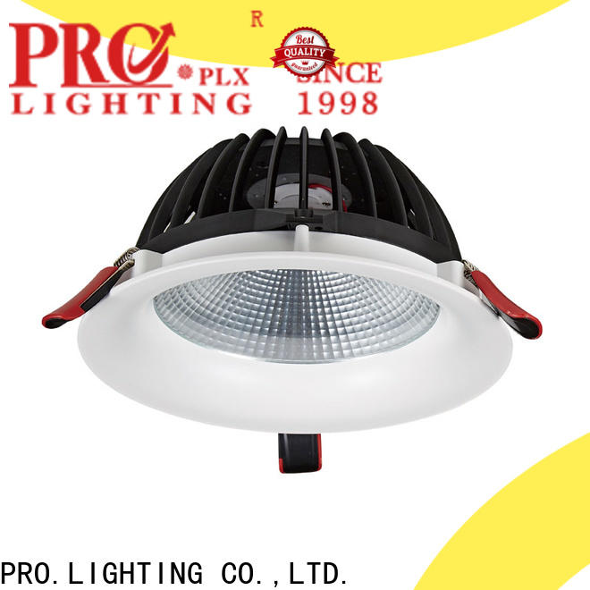 PRO.Lighting stable exterior downlights factory price for restaurant