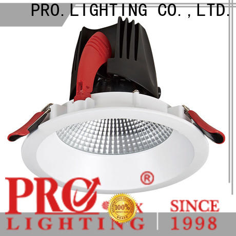 PRO.Lighting custom COB Downlight Manufacturer supplier for dance hall