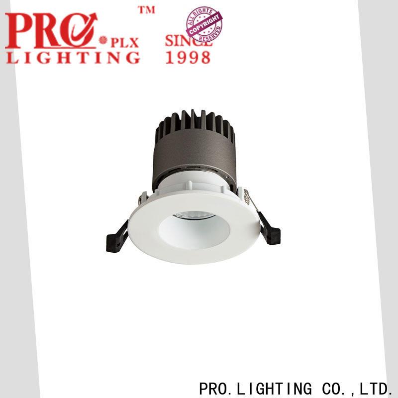 PRO.Lighting custom downlight spot supplier for ballroom
