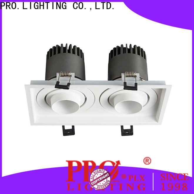 PRO.Lighting stable led downlight spot personalized for shop
