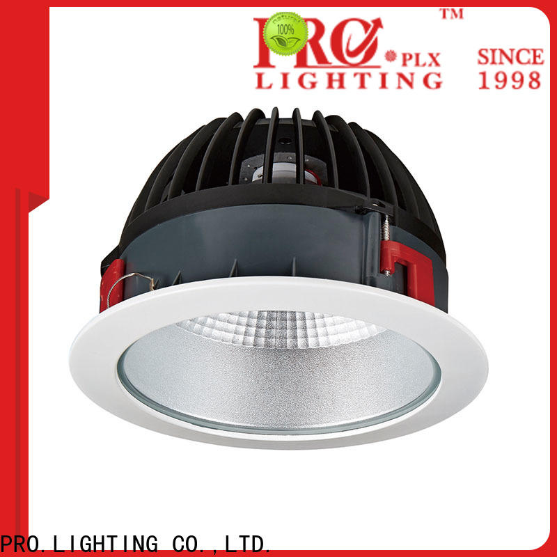 PRO.Lighting professional led downlight globes wholesale for ballroom