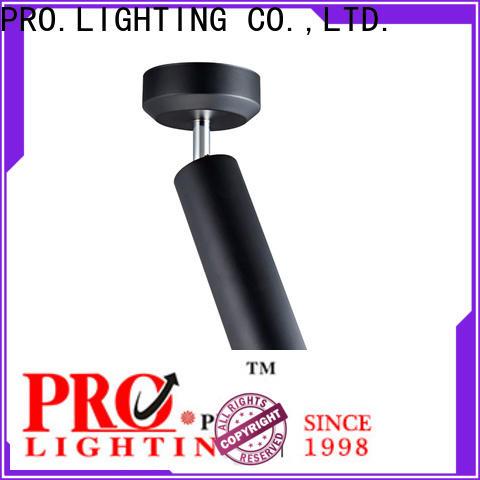 PRO.Lighting aluminum black pendant light from China for museum