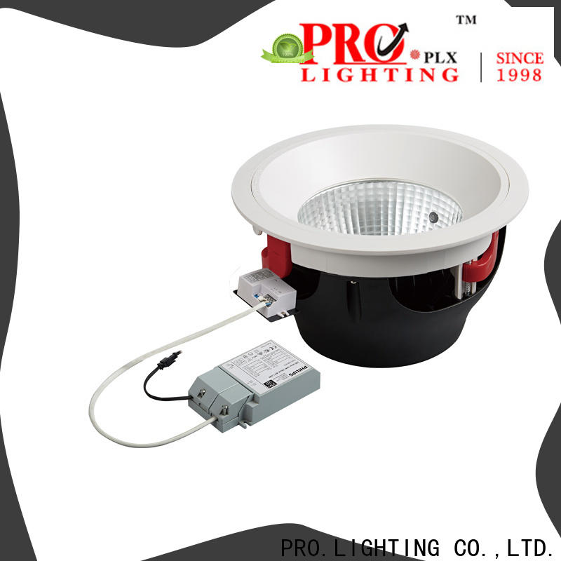 PRO.Lighting custom hotel downlight personalized for stage