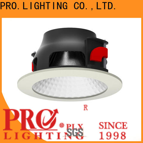 custom Wholesale Downlights 40w factory price for restaurant