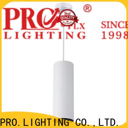 custom indoor pendant lights light series for museum