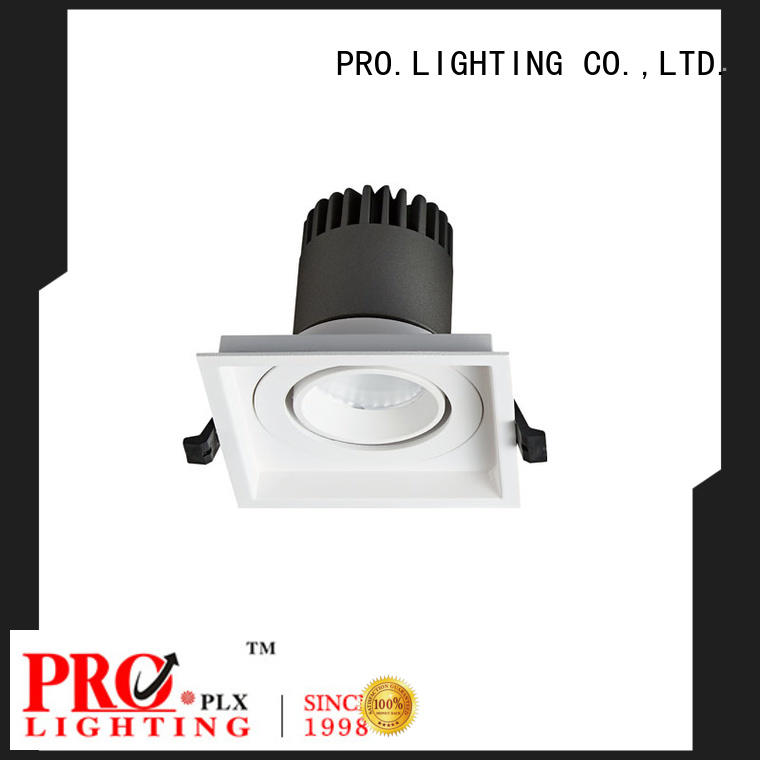 PRO.Lighting certificated Spot Downlight personalized for stage