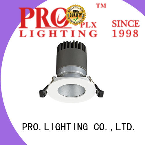 PRO.Lighting spot downlight led personalized for stage
