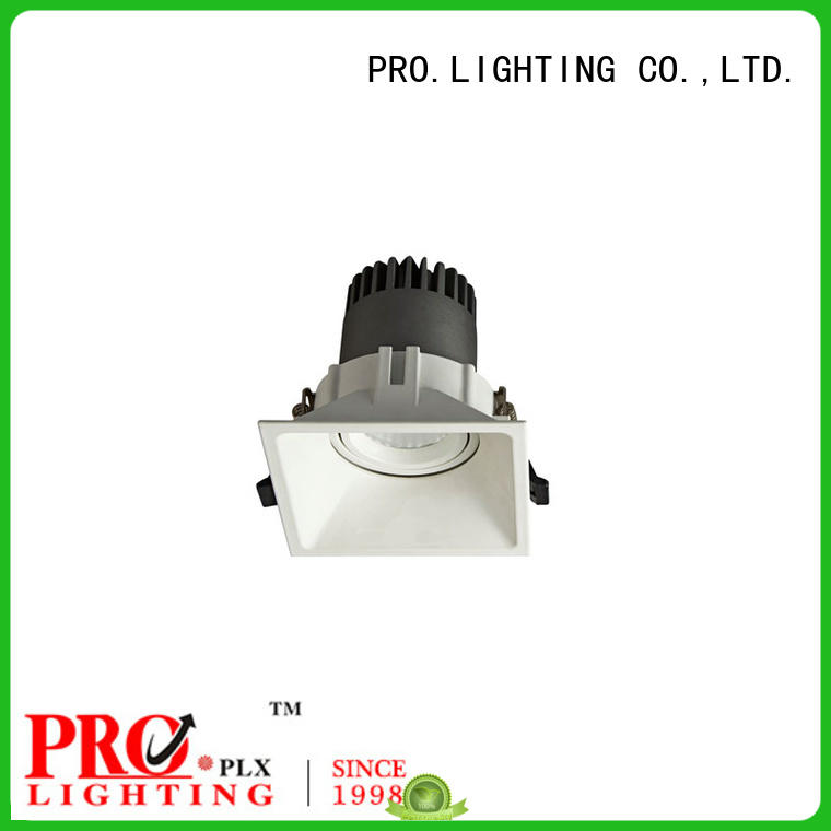 PRO.Lighting Spot Downlight supplier for restaurant