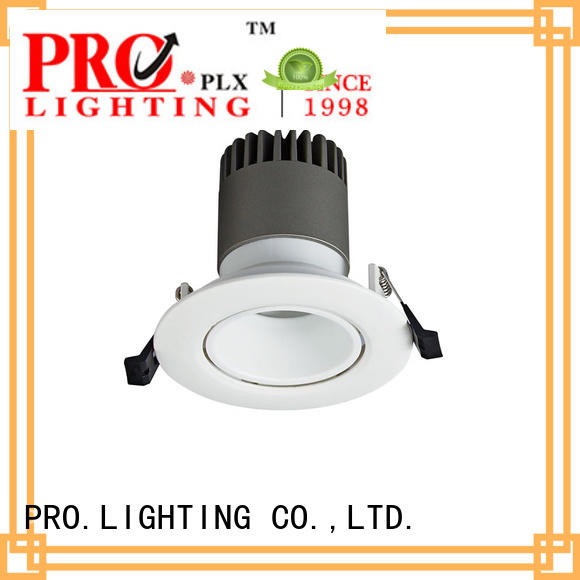 PRO.Lighting stable spot downlight led personalized for stage