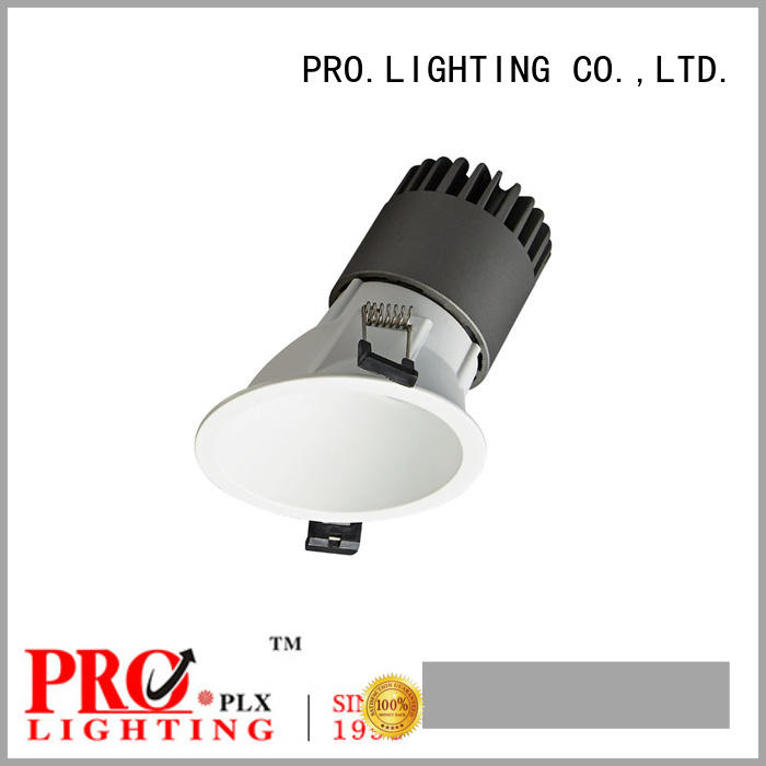 PRO.Lighting sturdy downlight spot for restaurant