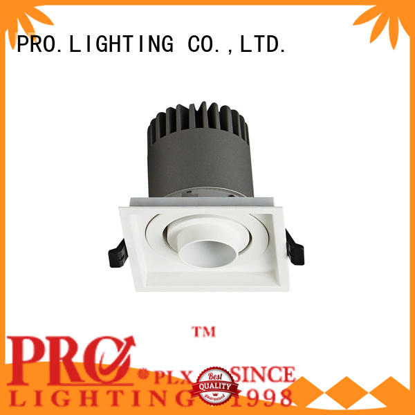 PRO.Lighting Spot Downlight factory price for restaurant