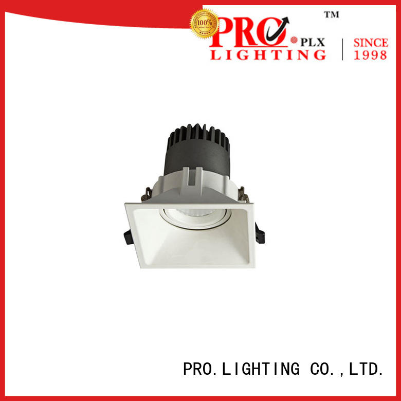 PRO.Lighting certificated spot led downlight personalized for restaurant