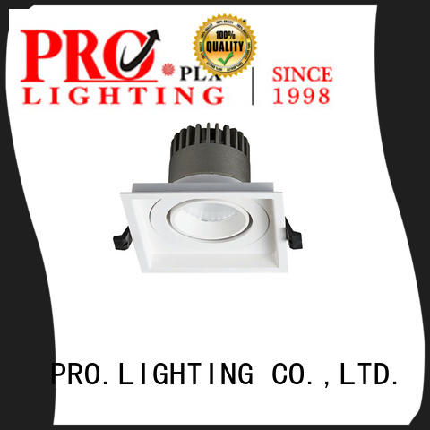 PRO.Lighting Spot Downlight personalized for restaurant