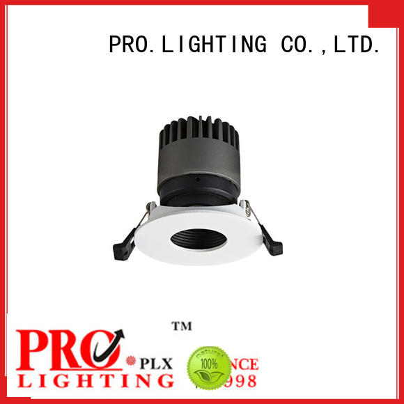 quality Spot Downlight personalized for restaurant