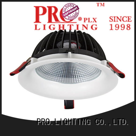 PRO.Lighting professional kitchen downlights personalized for dance hall
